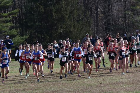 Centennial Cross Country Races at the State Championship